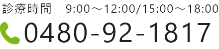 0480-92-1817